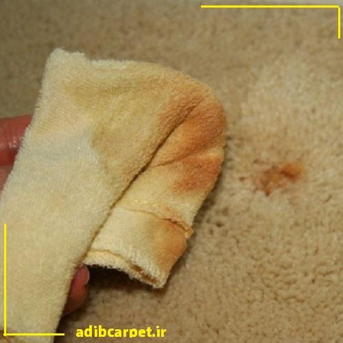 نحوه-شستن-لکه-زنگ-زده-از-فرش