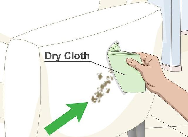 شستشوی-مبل-سفید-قالیشویی-ادیب