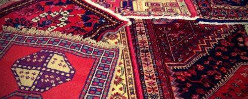 رفع-زردی-ریشه-قالیشویی