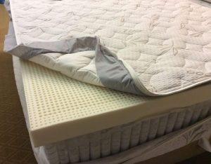 حذف-باکتری-تشک-تخت-قالیشویی-ادیب