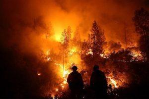 آتشسوزی-قالیبافی-اخبار-فرش