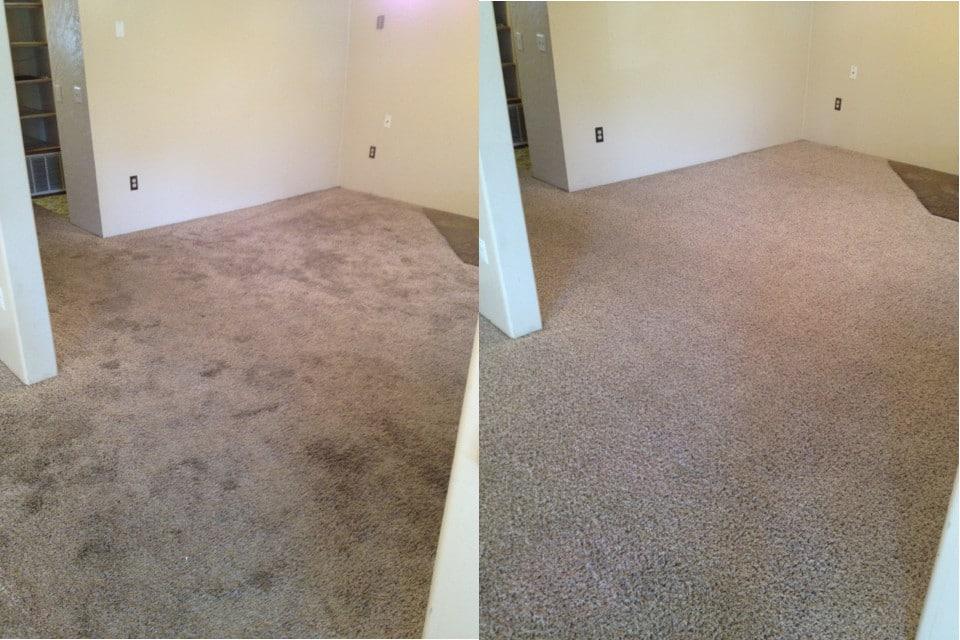 تمیز-کردن-فرش-قالیشویی