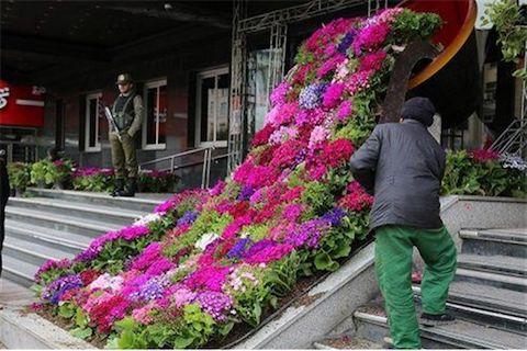 فرش-گل-منطقه-هفت-تهران